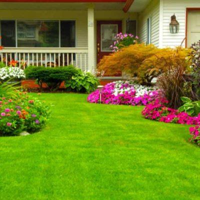 creación-de-jardin-buen-mantenimiento