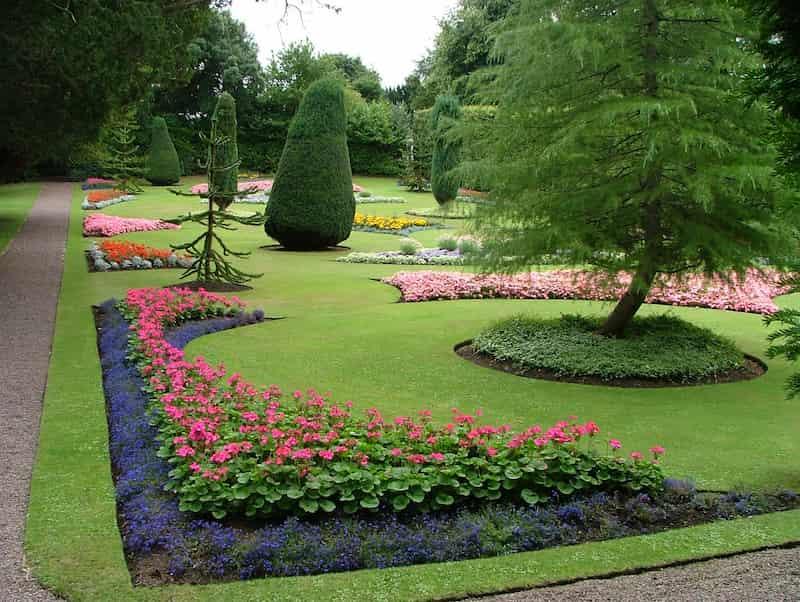 jardín-con-rododendro