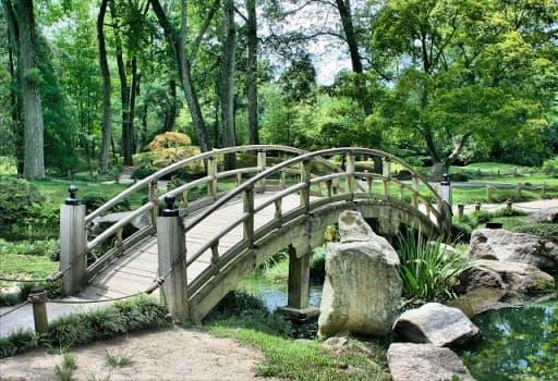 puente-paisajismo